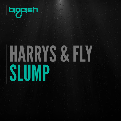 harrys-fly-slump