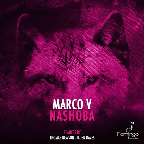 marco-v-nashoba-thomas-newson-remix-flamingo