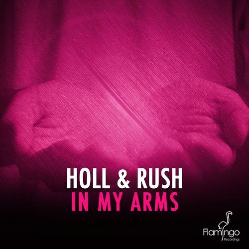 holl-rush-in-my-arms-flamingo
