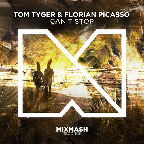 tom-tyger-florian-picasso-can-t-stop-mixmash