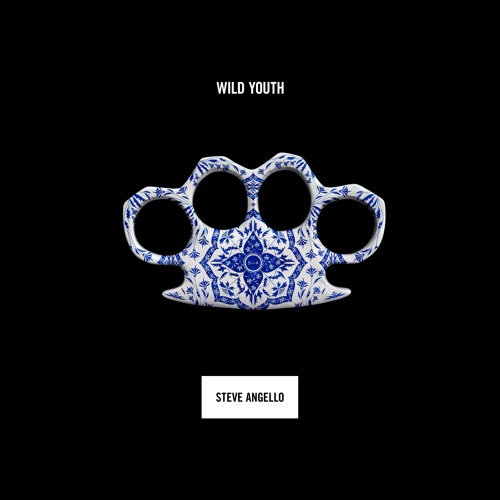 steve angello album wild youth