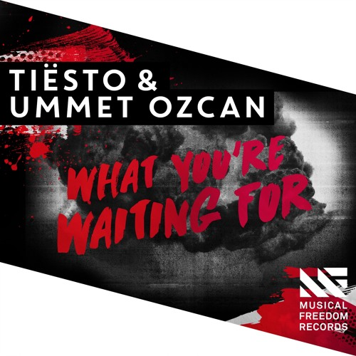 tiesto ummet ozcan what you're waiting for musical freedom