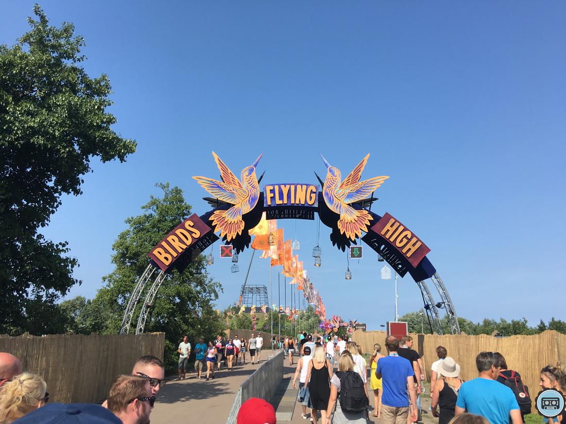 reportage mysteryland 2016 festival birds